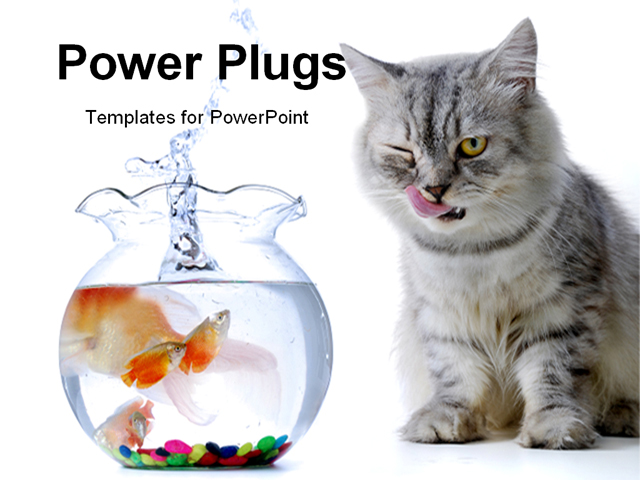 Powerpoint Background Cats Powerpoint Template Cat