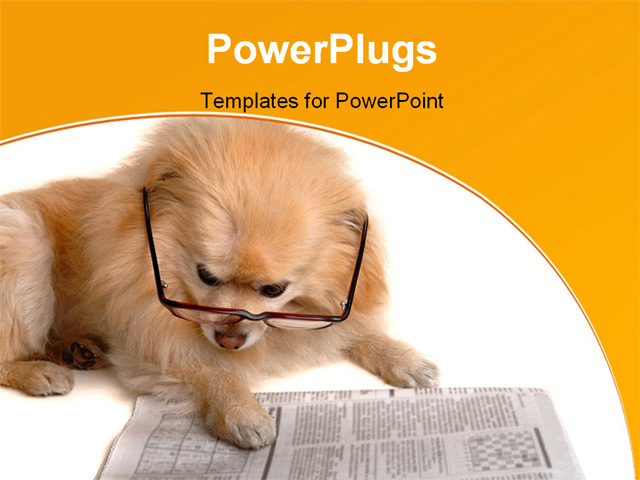PowerPoint Template - smart dog reading the newspaper - Title Slide