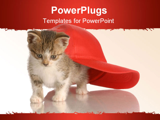PowerPoint Template: white and - 47.1KB