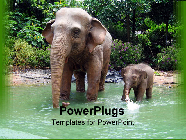 PowerPoint Template With Animals