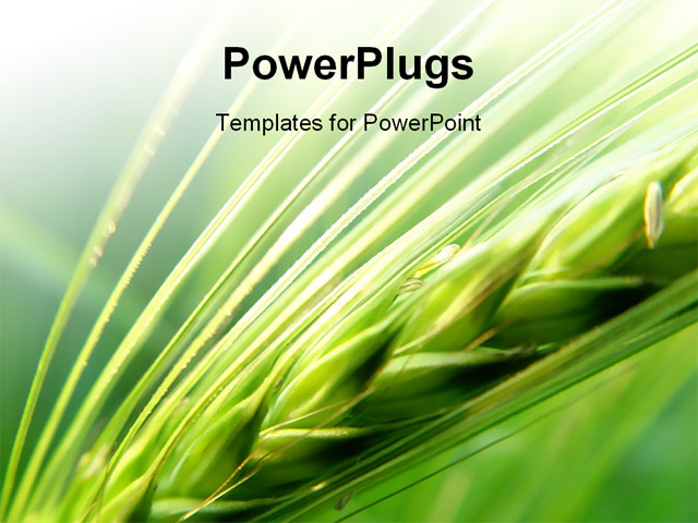 Powerpoint templates agriculture gallery powerpoint template and powerpoint templates agriculture image collections powerpoint powerpoint templates agriculture choice image powerpoint powerpoint templates agriculture toneelgroepblik Image collections
