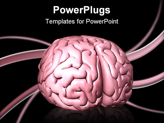 Free brain powerpoint templates 28 images the brain is being free brain powerpoint templates by d illustration of a human brain sitting on top of a toneelgroepblik Gallery