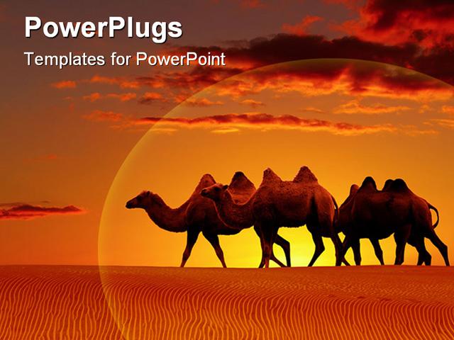 buy subscribe demo login desert landscape with walking camels at ...