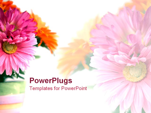 pics photos powerpoint s floral powerpoint template slides software