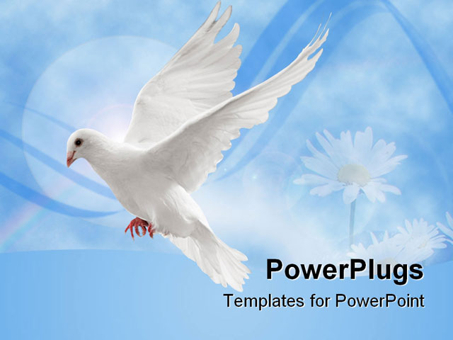 PowerPoint Template - flying white dove isolated on black background - Title Slide