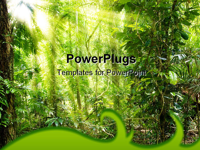Powerpoint template displaying view of a forest showing a foot path rainforest powerpoint template toneelgroepblik Gallery