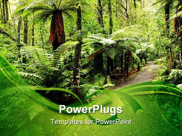 Rainforest powerpoint template targergolden dragon rainforest powerpoint template toneelgroepblik Gallery