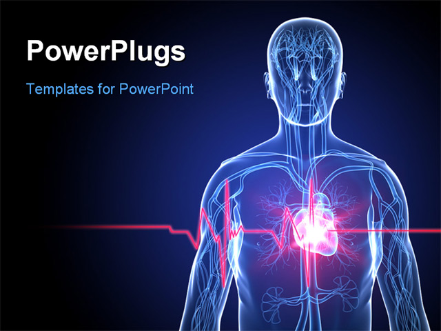 3d rendered illustration of a human anatomy with heartbeat for Cardiovascular powerpoint template free
