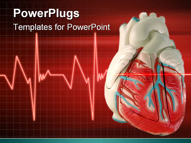 Free cardiac powerpoint templates microsoft powerpoint templates this is a medical anatomically correct model of the free cardiac powerpoint templates toneelgroepblik Images