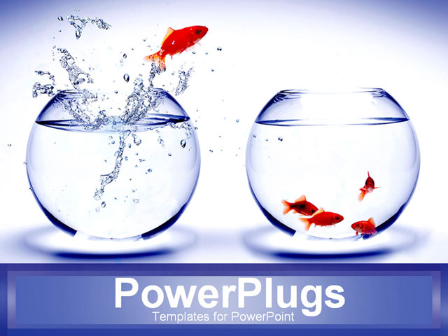 PowerPoint Template - goldfish jumping into bowl with other goldfish - Title Slide
