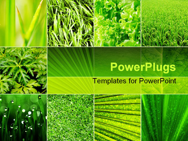 Ltleavesam17powerpointtemplatestitleslideg collage nature green b collage nature green background powerpoint template toneelgroepblik