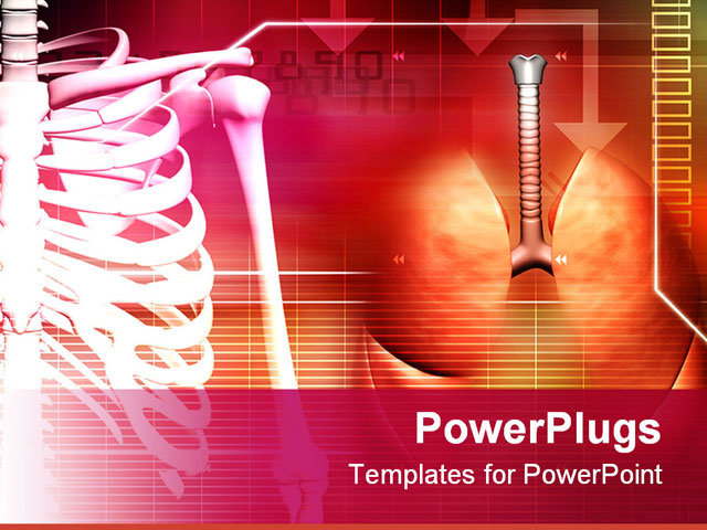 anatomy ppt templates free download - digital illustration of a human spine with lungs in brown