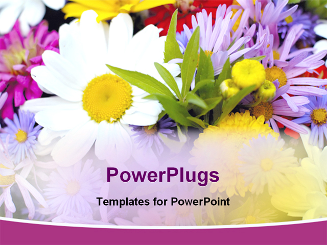 powerpoint templates free download flowers choice image, Powerpoint templates