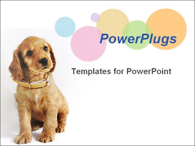 Dog powerpoint template mandegarfo dog powerpoint template toneelgroepblik