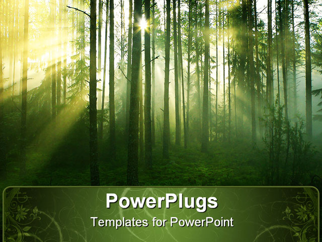 Powerpoint template about beautiful, coniferous, conservation