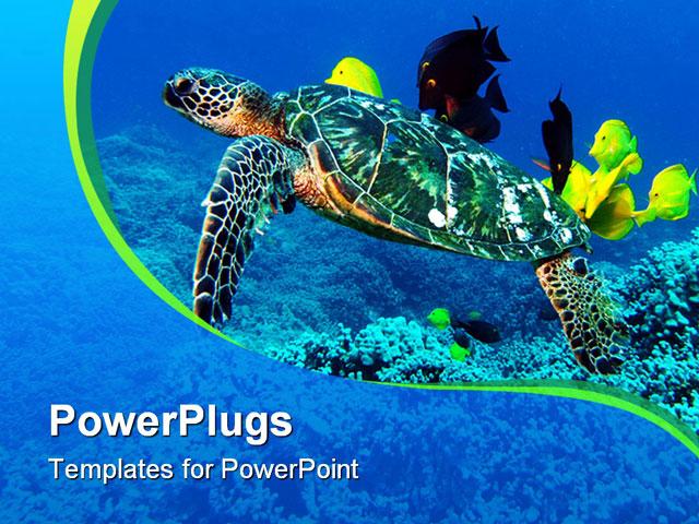 Turtle diagram template toneelgroepblik Images