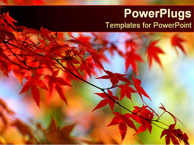 PowerPoint Template about fall, leaves, change