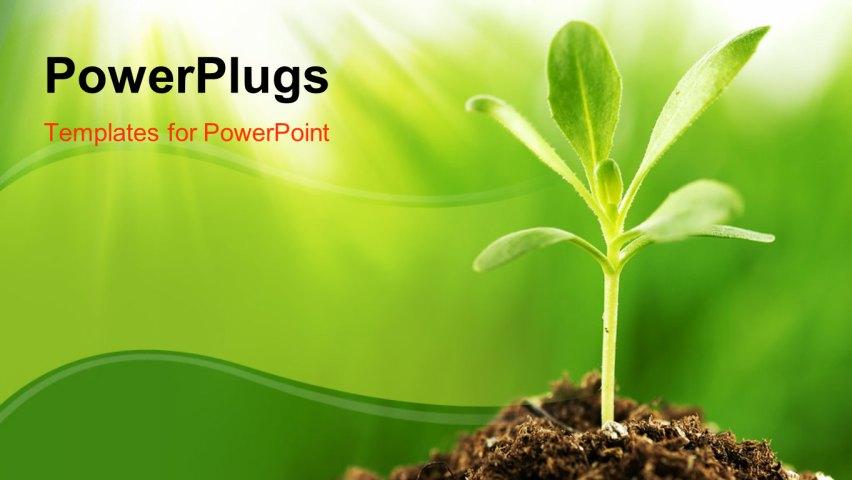 Plants ppt idealstalist plants ppt powerpoint template toneelgroepblik Gallery